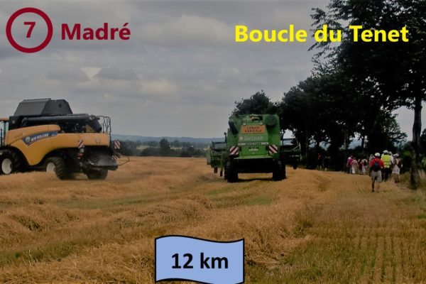 boucle 7